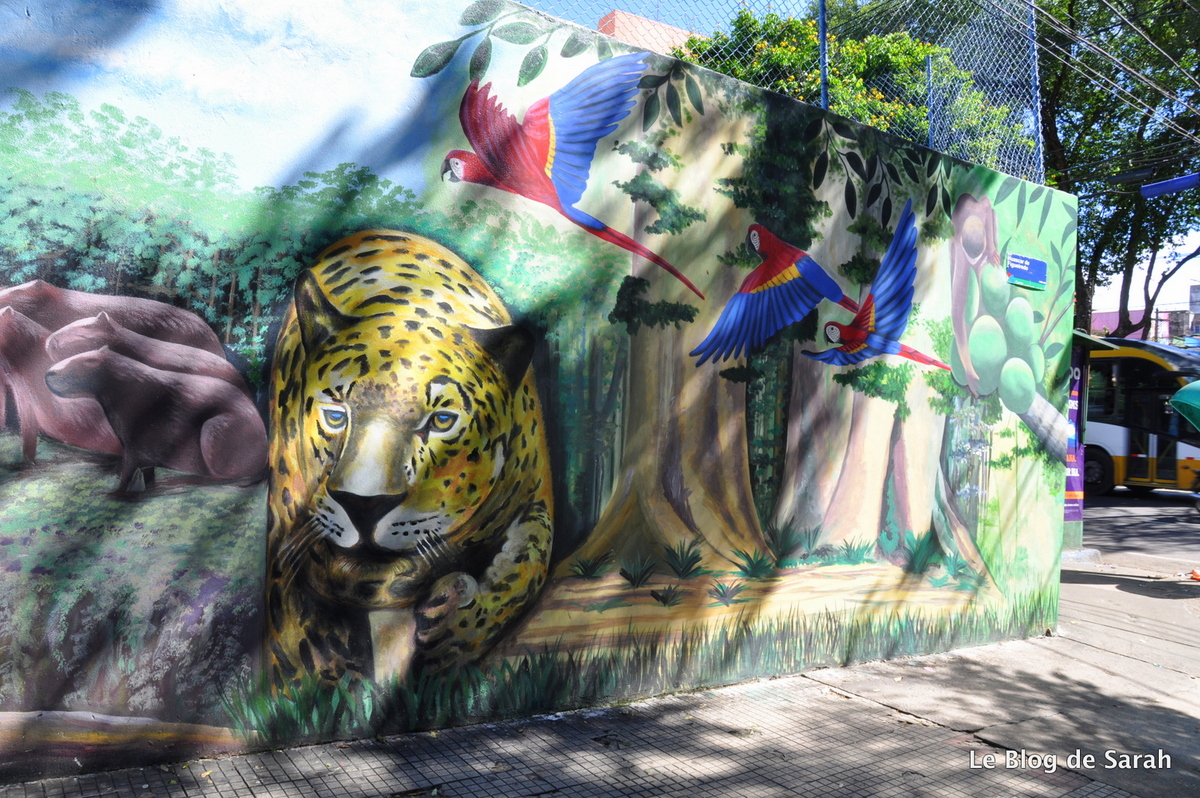 street-art-bresil-manaus-jungle 2