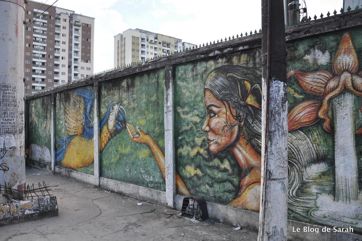 street-art-jungle-manaus-bresil